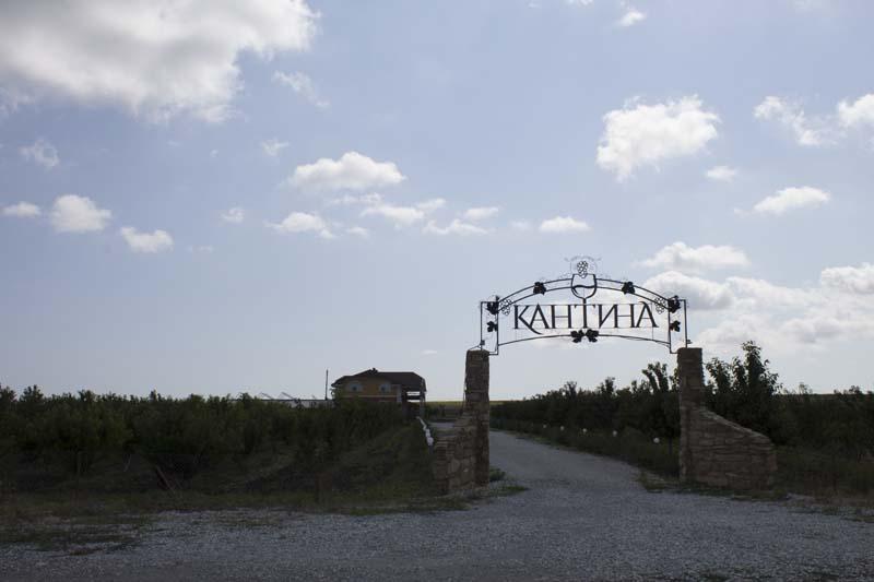 Винный тур на Кубань